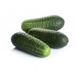 Organic short cucumber 1 Kg.