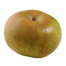 Organic Apples 1 kg.