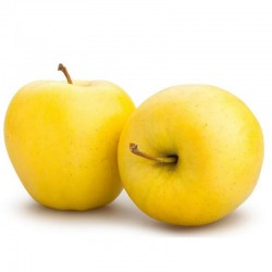 Organic Golden Apples 9 kg.